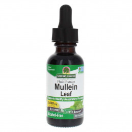 Nature's Answer - Mullein leaf Nature's Answer® - 1