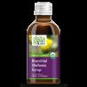 Gaia Herbs - GaiaKids ® Bronchial Wellness Syrop Gaia Herbs® - 1