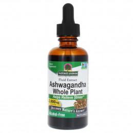 Indický ženšen, Ashwagandha withania Nature's Answer® - 1